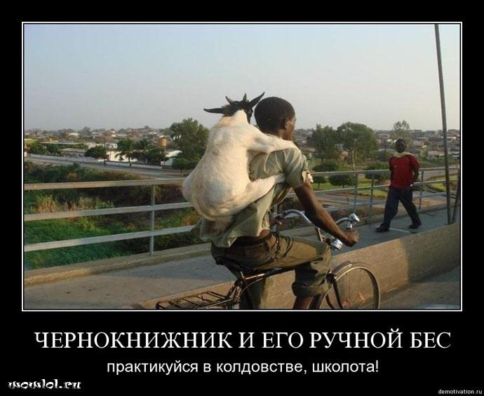 http://wowlol.ru/img/Warlock_Schoolers.jpg