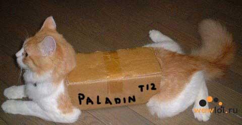 Т12 сет паладина