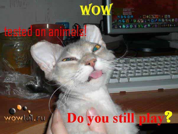 Вов испытан на животных