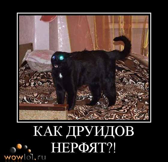 ОМГ КОТОВ НЕРФЯТ!11