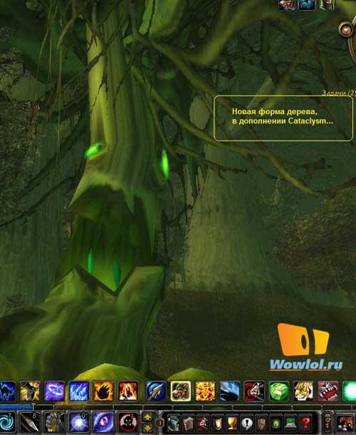 Новая форма дерева у друидов в катаклизме