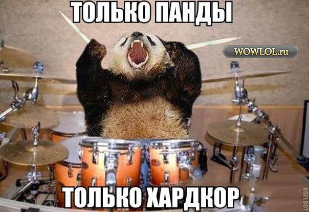все те же панды