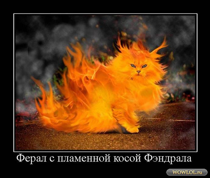 Огненный ферал