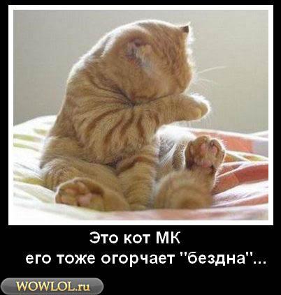 Кот МК