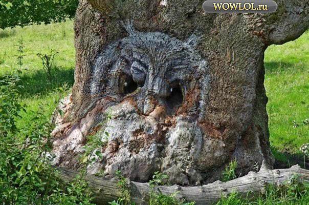 Сова в форме дерева