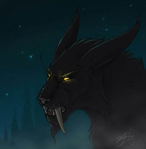 Друль в кошке