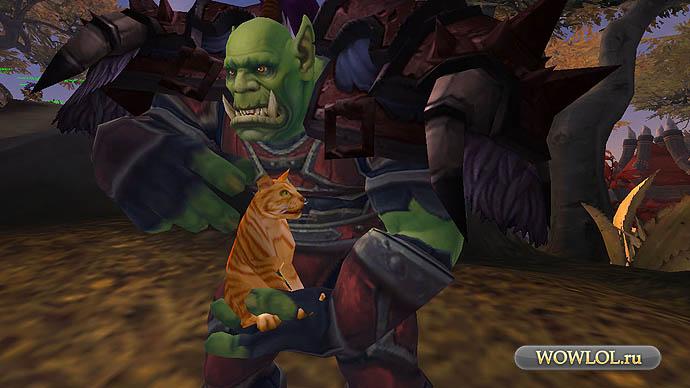 Орк и котики