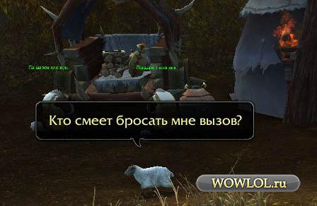 опасная овца!