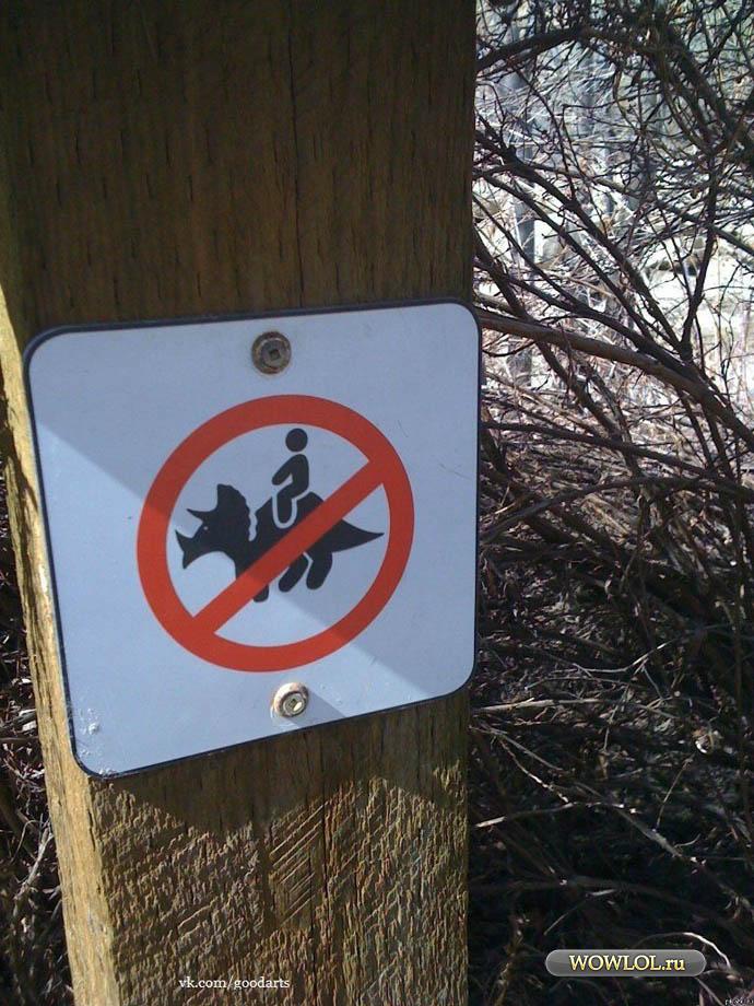 Не кататься на дикорогах
