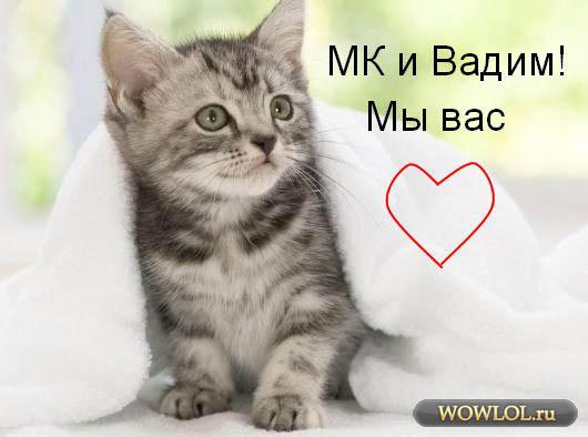 Подарок для МК и Вадима
