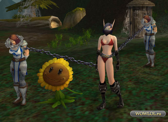 BDSM in WOW
