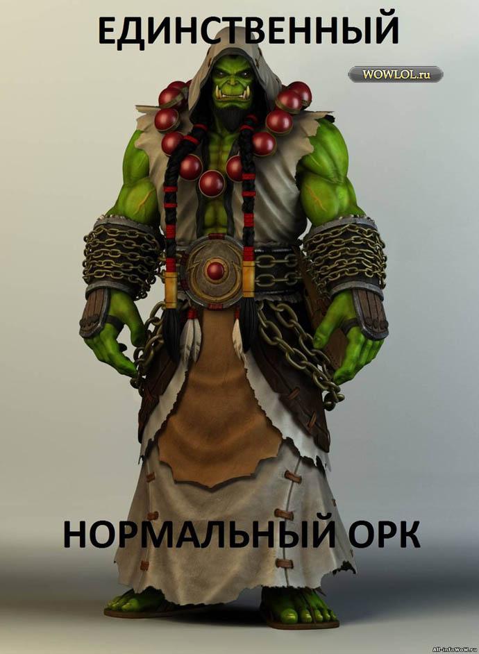 Единственный нормальный орк))))