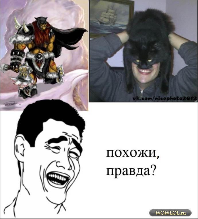 -/-/-/-