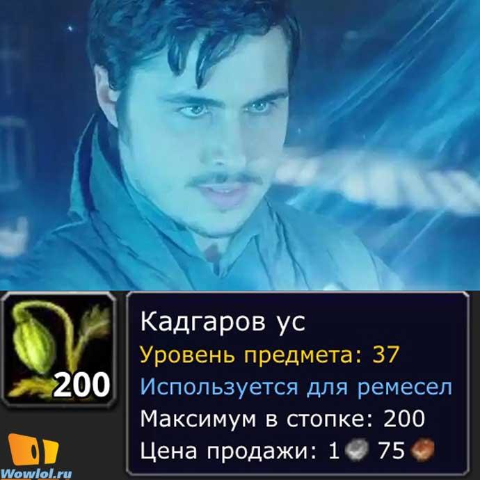 кадгар