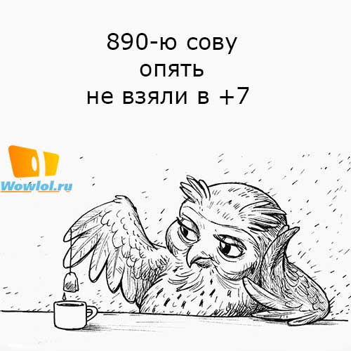 890-я сова