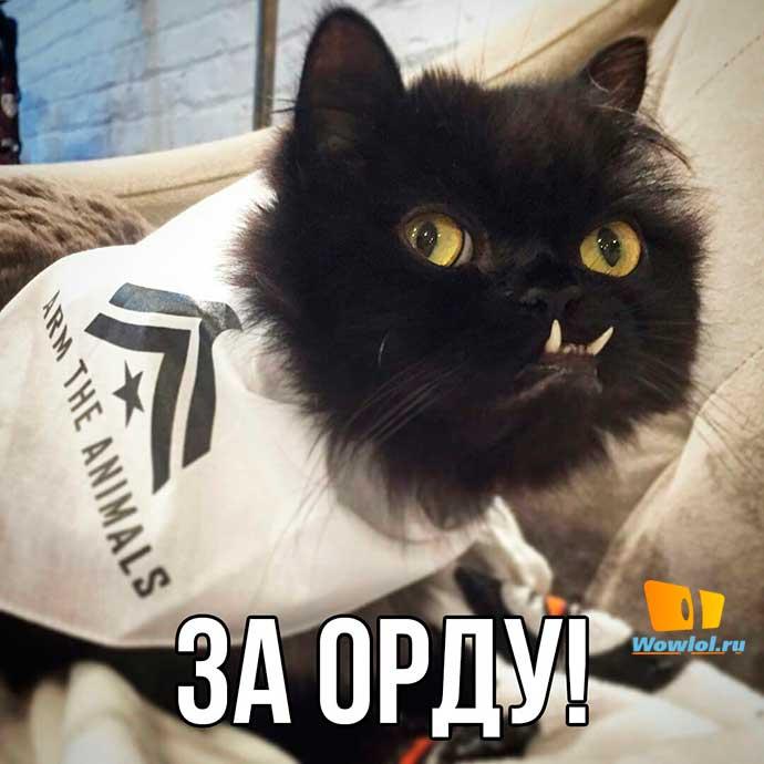 за орду!)