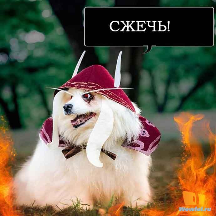 СЖЕЧЬ