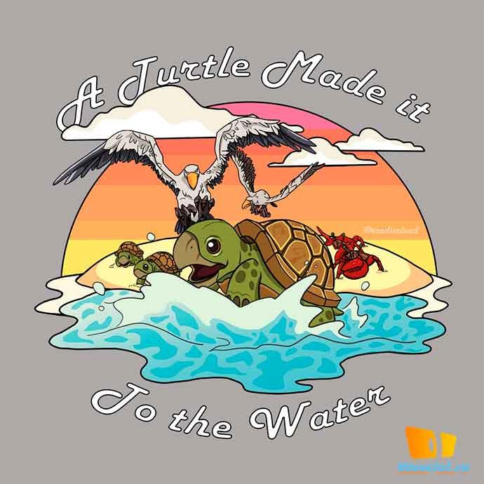 Черепаха добралась до воды